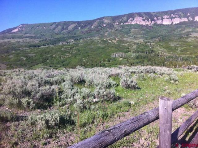 310 Eagles Rest Drive, Cimarron, CO 81220 (MLS #750894) :: The Dawn Howe Real Estate Network   Keller Williams Colorado West Realty