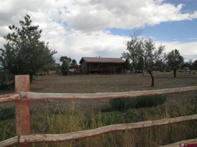 66217 Rose Road, Montrose, CO 81403 (MLS #750896) :: Durango Home Sales