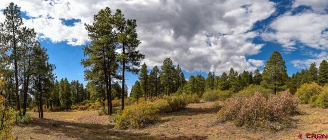 269 Old Cortez Trail, Bayfield, CO 81122 (MLS #750911) :: Durango Home Sales