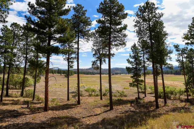 540 Bald Eagle Road, Bayfield, CO 81122 (MLS #750913) :: CapRock Real Estate, LLC