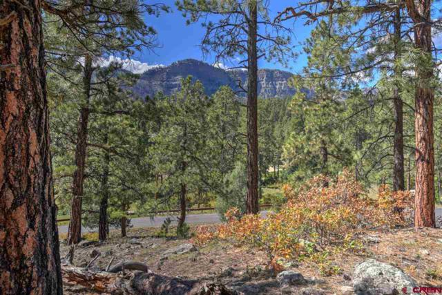 49 Old Stage Coach Pass, Durango, CO 81301 (MLS #750978) :: The Dawn Howe Real Estate Network | Keller Williams Colorado West Realty