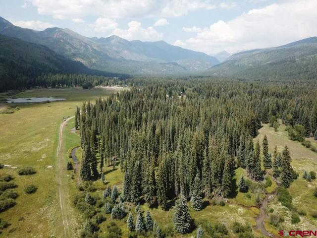 201 Golden Forest Road, Vallecito Lake/Bayfield, CO 81122 (MLS #750980) :: The Dawn Howe Real Estate Network | Keller Williams Colorado West Realty