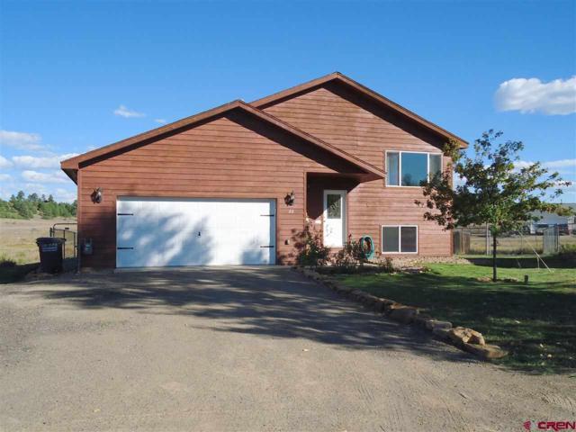 22 Lancer Court, Pagosa Springs, CO 81147 (MLS #750996) :: Durango Home Sales