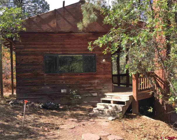 125 Navajo Place, Pagosa Springs, CO 81147 (MLS #751024) :: CapRock Real Estate, LLC