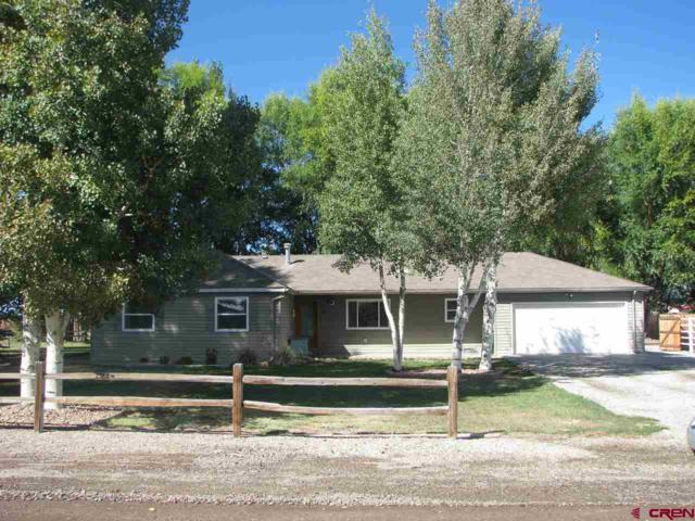 156 Pintada Drive, Monte Vista, CO 81144 (MLS #751060) :: Durango Home Sales