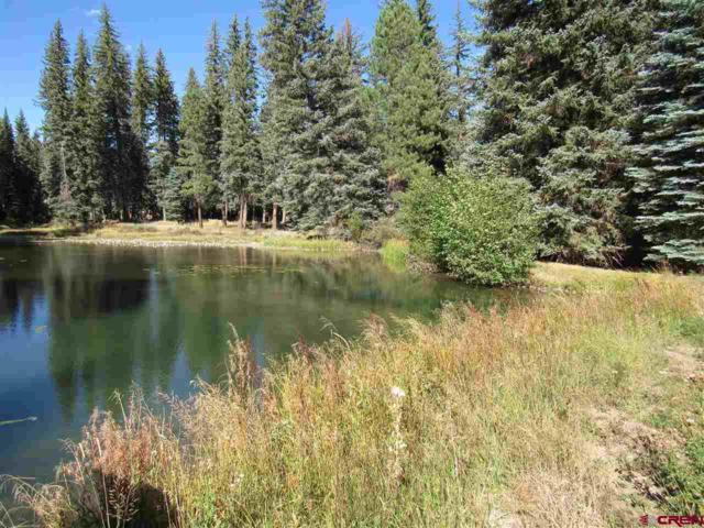 TBD Boletus Creek Drive, Bayfield, CO 81122 (MLS #751062) :: CapRock Real Estate, LLC