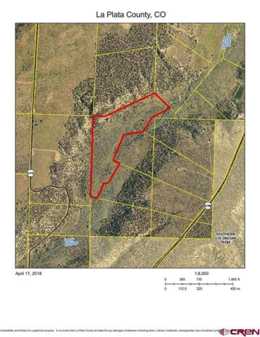 TBD Cr 136, Hesperus, CO 81326 (MLS #751068) :: Durango Mountain Realty