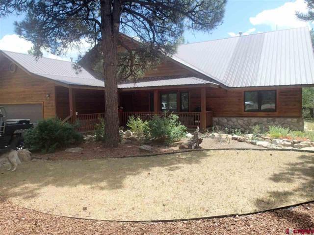 206 Stevens Circle, Pagosa Springs, CO 81147 (MLS #751100) :: CapRock Real Estate, LLC