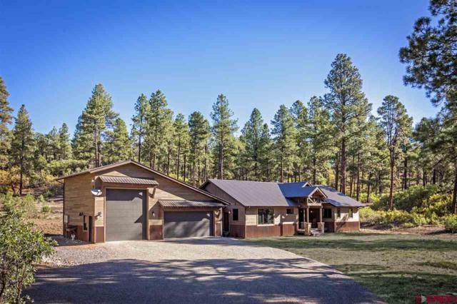 500 Hawks Meadow Drive, Bayfield, CO 81122 (MLS #751158) :: CapRock Real Estate, LLC