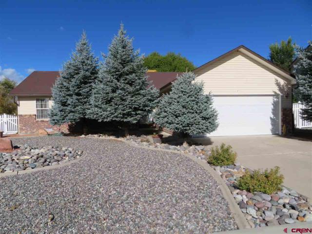1880 Biron Road, Montrose, CO 81401 (MLS #751212) :: CapRock Real Estate, LLC
