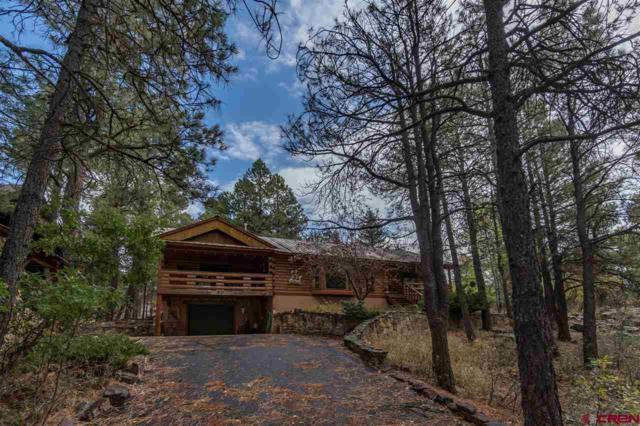49 Sandstone Court, Pagosa Springs, CO 81147 (MLS #751220) :: CapRock Real Estate, LLC