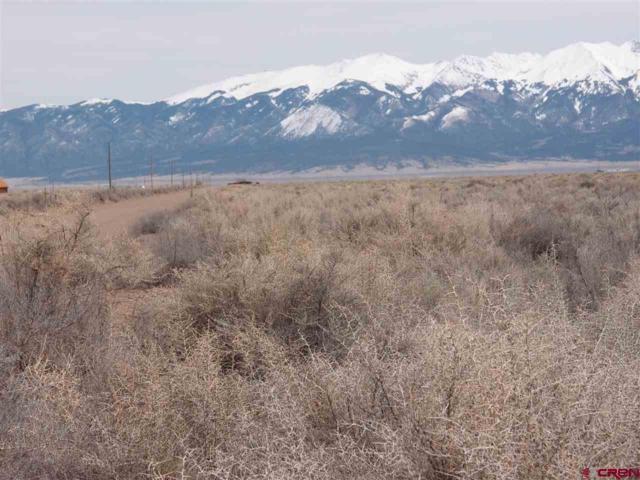 TBD Four North Road Road, Mosca, CO 81146 (MLS #751223) :: Durango Home Sales