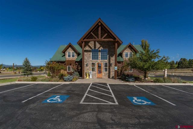 390 Boulder Drive, Pagosa Springs, CO 81147 (MLS #751229) :: Keller Williams CO West / Mountain Coast Group