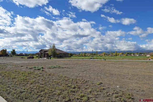 Lot 2512 Fellows Drive, Montrose, CO 81401 (MLS #751269) :: Durango Home Sales