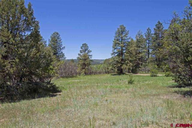 66 Mountain View Circle, Durango, CO 81303 (MLS #751418) :: Durango Mountain Realty