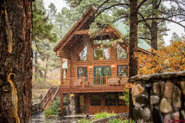48 Pueblo Court, Pagosa Springs, CO 81147 (MLS #751437) :: Durango Home Sales