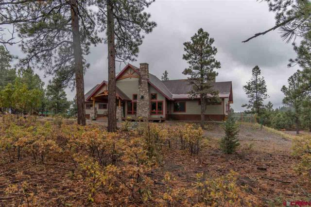 25 Crown Court, Pagosa Springs, CO 81147 (MLS #751440) :: Durango Home Sales