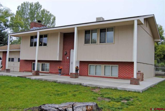 581 Willow Wood Lane, Delta, CO 81416 (MLS #751460) :: CapRock Real Estate, LLC