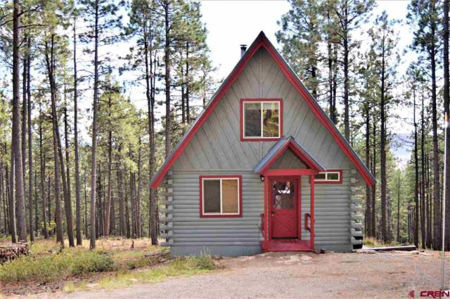56 Blue Ridge Drive, Bayfield, CO 81122 (MLS #751476) :: Keller Williams CO West / Mountain Coast Group