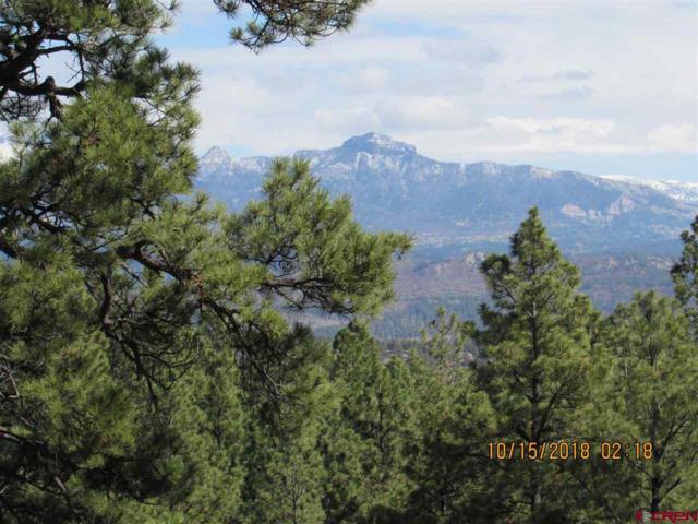 139 Cool Pines Drive, Pagosa Springs, CO 81147 (MLS #751501) :: Durango Home Sales