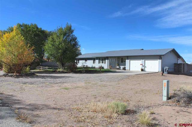 5827 Aspen Avenue, Alamosa, CO 81101 (MLS #751529) :: CapRock Real Estate, LLC