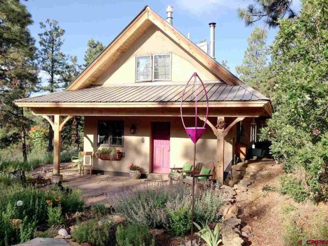 935 Deer Trail Road, Durango, CO 81303 (MLS #751558) :: Durango Home Sales