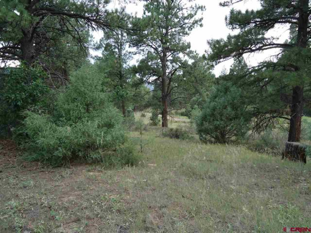 165 Dyke Circle, Pagosa Springs, CO 81147 (MLS #751569) :: CapRock Real Estate, LLC