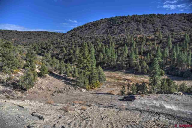 374 Cherry Creek Ranch Lane, Hesperus, CO 81326 (MLS #751572) :: Durango Mountain Realty