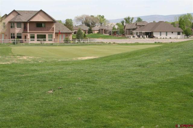 1009 San Sophia Drive, Montrose, CO 81403 (MLS #751602) :: CapRock Real Estate, LLC