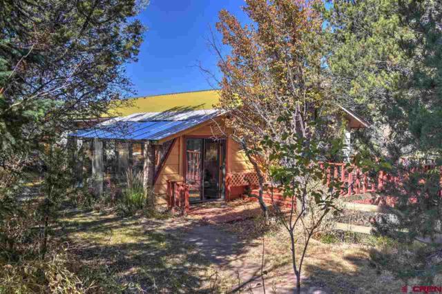 533 Cr 219, Durango, CO 81301 (MLS #751620) :: Durango Mountain Realty