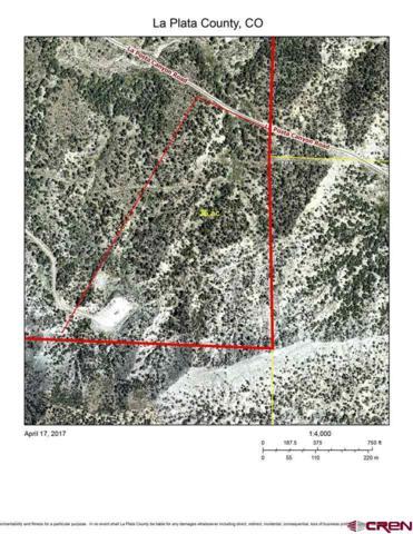 1786 La Posta Canyon Road, Durango, CO 81303 (MLS #751641) :: Durango Mountain Realty