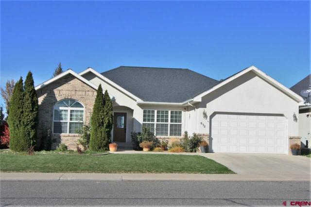 675 Cobble Drive, Montrose, CO 81401 (MLS #751663) :: CapRock Real Estate, LLC