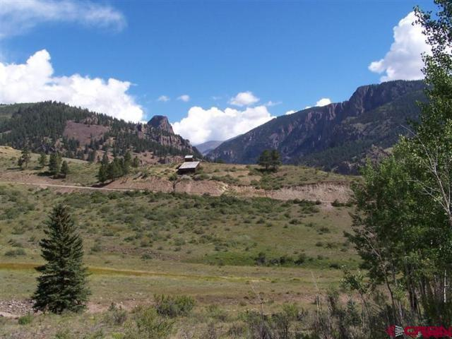 TBD Molly S Drive, Creede, CO 81130 (MLS #751709) :: The Dawn Howe Group | Keller Williams Colorado West Realty