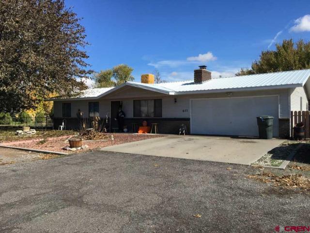 611 Veinte Drive, Delta, CO 81416 (MLS #751746) :: CapRock Real Estate, LLC