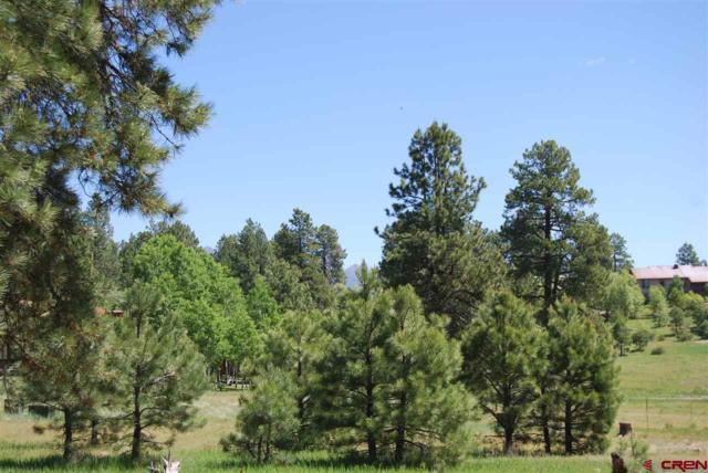 513 Hills Circle, Pagosa Springs, CO 81147 (MLS #751748) :: CapRock Real Estate, LLC