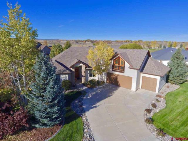 3808 Mount Hayden Drive, Montrose, CO 81403 (MLS #751750) :: CapRock Real Estate, LLC