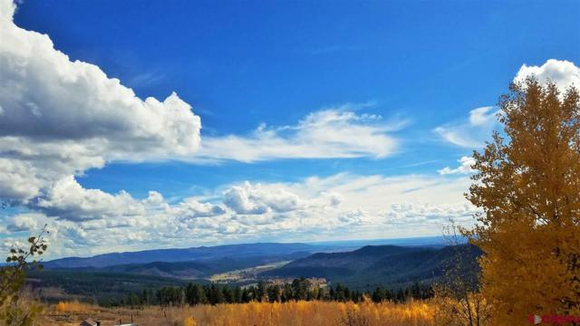 1445 Rosalie Drive, Durango, CO 81301 (MLS #751753) :: Durango Home Sales
