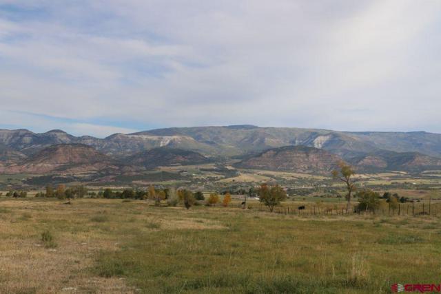 5757 Me Road, Collbran, CO 81624 (MLS #751825) :: CapRock Real Estate, LLC