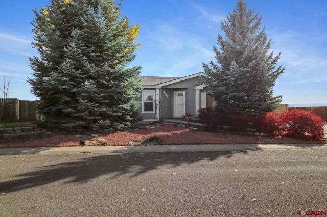 1834 Roxie Drive, Montrose, CO 81401 (MLS #751868) :: Durango Home Sales