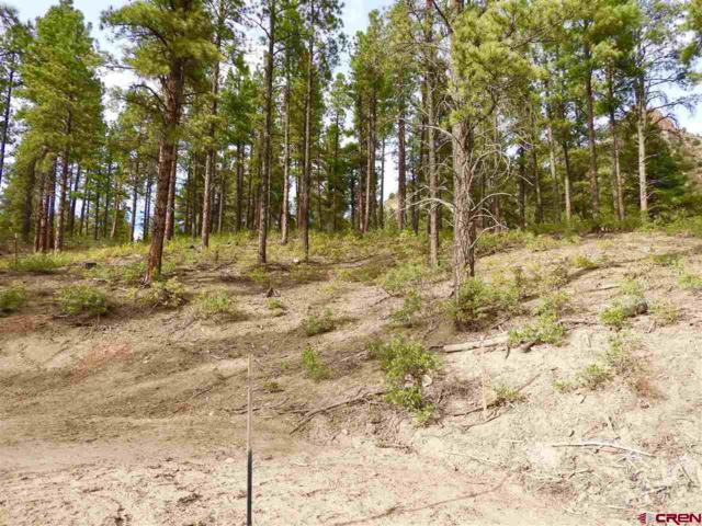 (Lot 88) TBD Sego Lily Court, Durango, CO 81301 (MLS #751877) :: Durango Mountain Realty