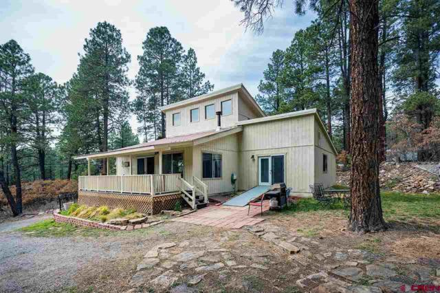 587 Pine Valley Road, Bayfield, CO 81122 (MLS #751906) :: Keller Williams CO West / Mountain Coast Group