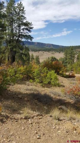166 Cat Creek Overlook, Pagosa Springs, CO 81147 (MLS #751914) :: Durango Home Sales