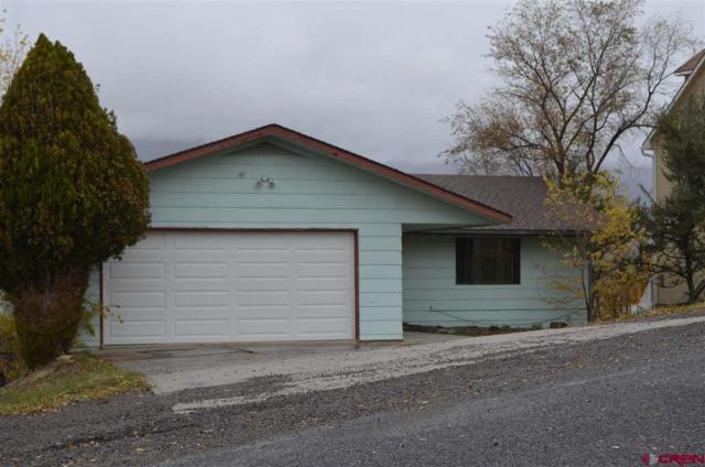 29 Pan American Avenue, Paonia, CO 81428 (MLS #751916) :: Durango Home Sales