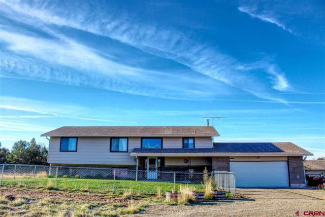 27124 Road M, Dolores, CO 81323 (MLS #751927) :: CapRock Real Estate, LLC