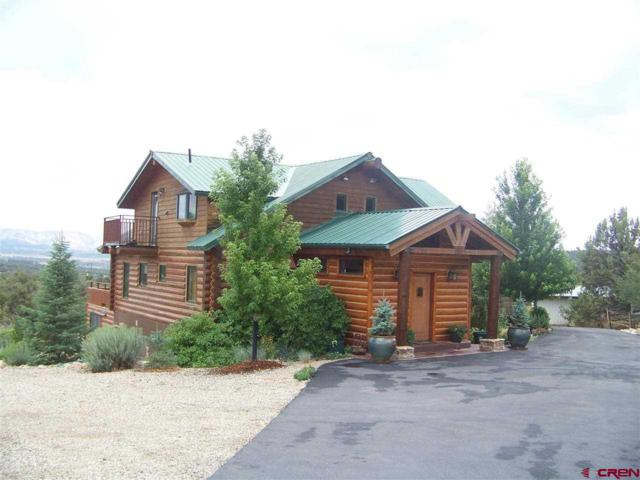10266 Road 35, Mancos, CO 81328 (MLS #751970) :: CapRock Real Estate, LLC