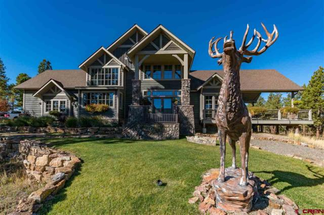 171 S Squaw Canyon Place, Pagosa Springs, CO 81147 (MLS #752000) :: CapRock Real Estate, LLC
