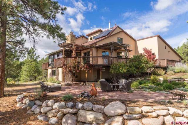 416 Red Oaks Lane, Hesperus, CO 81326 (MLS #752003) :: CapRock Real Estate, LLC