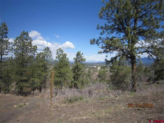 307 Rifle Place, Pagosa Springs, CO 81147 (MLS #752014) :: CapRock Real Estate, LLC