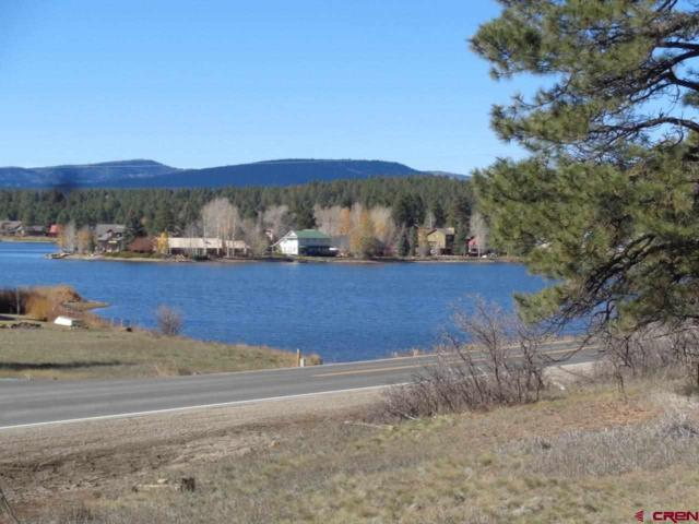 15 Sierra Court, Pagosa Springs, CO 81147 (MLS #752023) :: Durango Home Sales