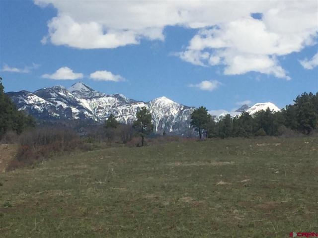 X Piney Place, Pagosa Springs, CO 81147 (MLS #752063) :: Durango Home Sales